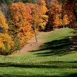 Stock Photo: Golf course fairway in fall