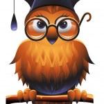 Wise Owl — Stock Vector