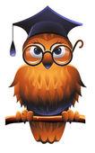 賢明なフクロウ — ストックベクタ