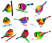 Collection of Colorful Birds — Stock Vector