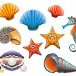 Stock Vector: Seashell Set