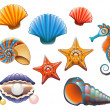 Seashell Set - Stock Vector