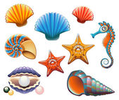 Seashell Set — Stock Vector