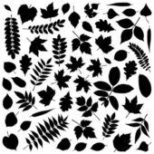 Samling på blad silhuetter — Stockvektor
