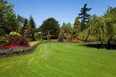 Jardin fleuri — Photo