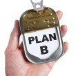 Royalty-Free Stock Photo: Plan B