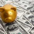 Piggy Bank and Hundred Dollar Bills — Stock Photo