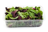 Box Salad — Stock Photo