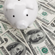 Stock Photo: Piggy Bank and Hundred Dollar Bills