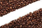 Coffee Bean — Stock Photo