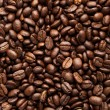 Coffee Bean — Stock Photo #5899993