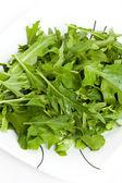 Vegetable Salad Mizuna — Stock Photo