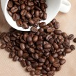 Coffee Bean — Stock Photo #5900165