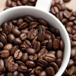 Coffee Bean — Stock Photo #5900170
