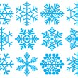 Collection of snowflakes. - Vettoriali Stock