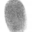 Stock Photo: Finger print.