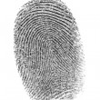Finger print. - Stock Photo