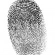 Finger print. — Foto Stock