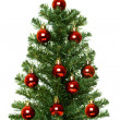 Christmas Tree. — Stock Photo #5799899