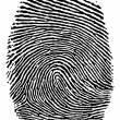 Royalty-Free Stock Vector Image: Finger print.