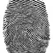 Finger print. — Stock Vector