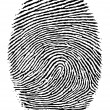 Stock Vector: Finger print.