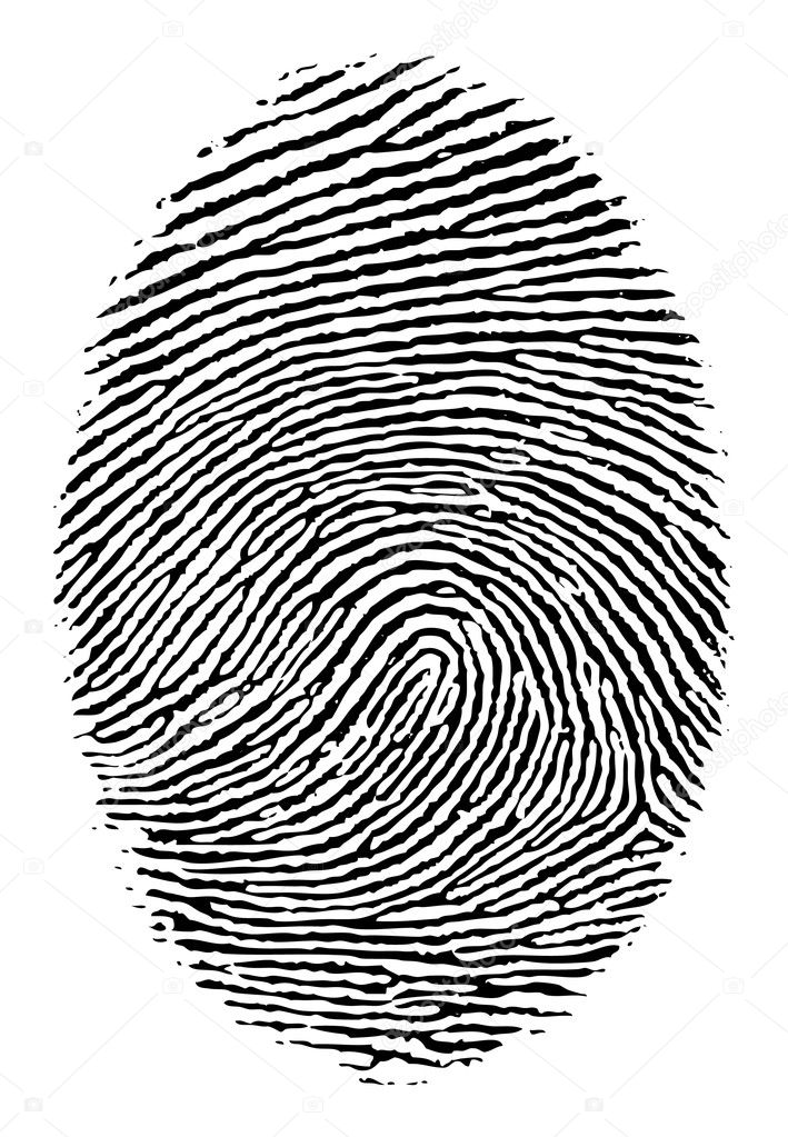 Vector format of finger print.  Stockvektor #5793495