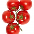 Vine ripe tomatoes. - Stock Photo
