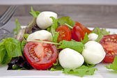 Insalata Caprese — Stock Photo