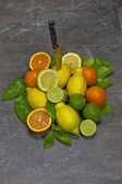 Citrus fruits with knife — Stock Photo