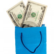 Dollar bill on a Shopping bag. With clipping path — Stock Photo