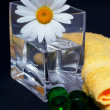 Daisy in the vase and bath pearls — Stock Photo