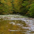 Mountain River in autumn — Stock Photo #5883093
