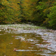 Mountain River in autumn — ストック写真
