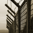 Security fence - Stock Photo