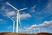 风力涡轮机农场 — 图库照片