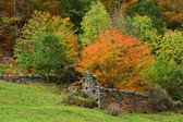 Old walls in autumn — Stock Photo