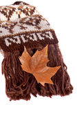 Leaf and scarf — Stock Photo