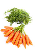Bunch of fresh carrots — Fotografia Stock