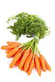 Manojo de zanahorias frescas — Foto de Stock