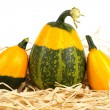 Yellow and green pumpkins — Stock Photo