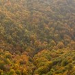 Autumns colors cover the valley — Stock Photo