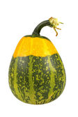 Green and yellow pumpkin — Foto Stock