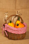 Pumpkins and sacs in the basket — Stock Photo
