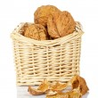 Walnuts in the basket — Stock Photo