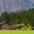 Cottages in Austria — Stock Photo #6342685