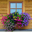 Typical floral adornments in Austria — Stock Photo #6342700