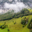 Landscape under the fog in Austria — Stock Photo