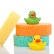 Sponges and rubber ducks - Stock Photo