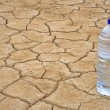 Стоковое фото: Water bottle on dry ground